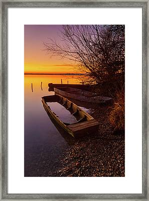 Framed Print featuring the photograph Flame Of Dawn by Davor Zerjav
