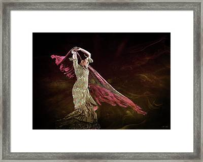 Flamenco Nomada  Framed Print