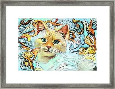 Flamepoint Siamese Cat Framed Print by Amy Cicconi