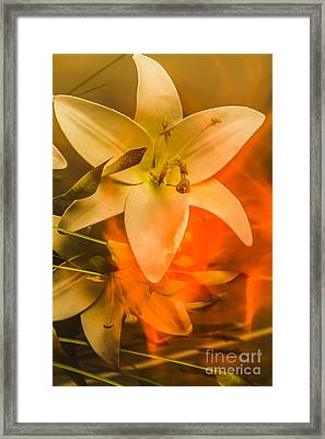 Flames Of Intimacy Framed Print by Jorgo Photography - Wall Art Gallery
