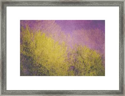 Framed Print featuring the photograph Flaming Foliage 3 by Ari Salmela