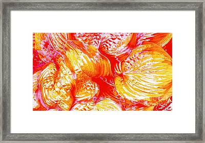 Flaming Hosta Framed Print