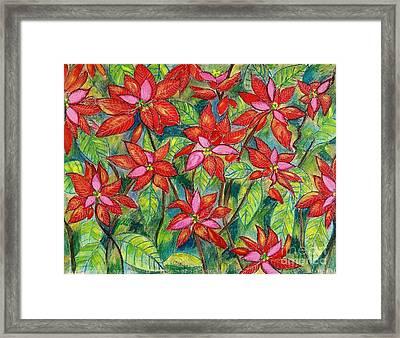 Flaming Poinsettias Framed Print