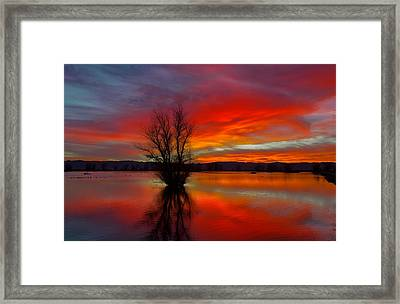 Flaming Reflections Framed Print