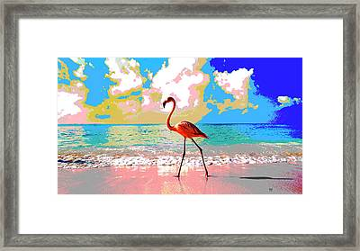 Flamingo At Sunset Framed Print by Charles Shoup