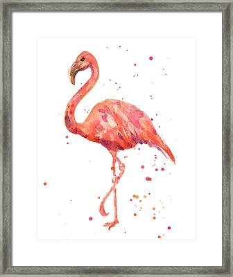 Flamingo Facing Left Framed Print by Alison Fennell