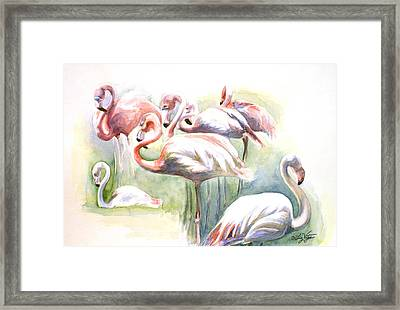Flamingo Fiesta Framed Print