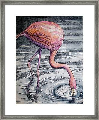Framed Print featuring the painting Flamingo Fishing  II by Martha Ayotte