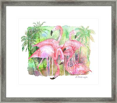 Flamingo Five Framed Print