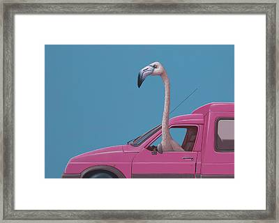 Flamingo Framed Print by Jasper Oostland