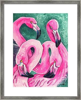 Flamingo Magic Framed Print by Zaira Dzhaubaeva