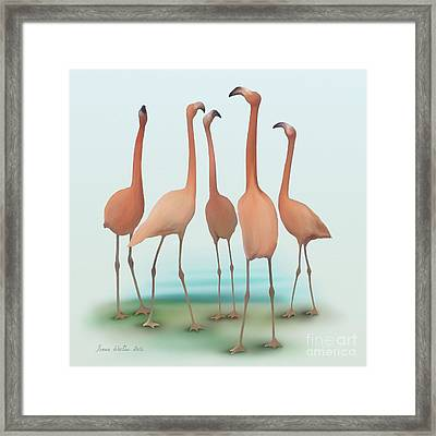 Flamingo Mingle Framed Print