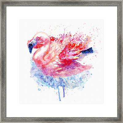 Flamingo On The Water Framed Print by Marian Voicu