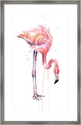Flamingo Painting Watercolor Framed Print by Olga Shvartsur