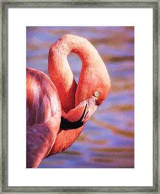 Flamingo Portrait Painting Framed Print by Martin Belan