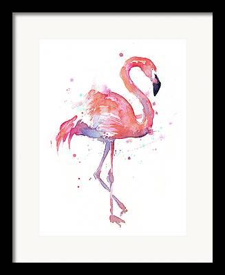 Whimsical Drawings Framed Prints