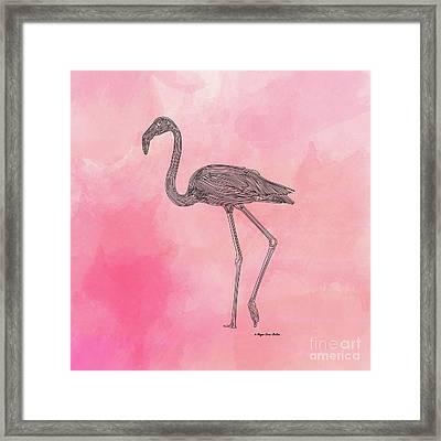 Flamingo3 Framed Print by Megan Dirsa-DuBois