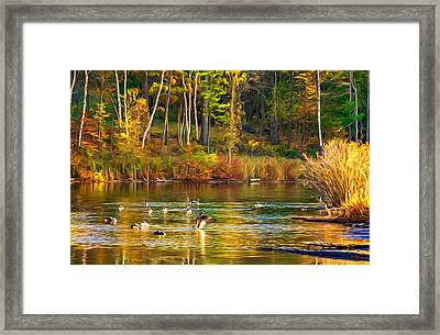 Flapping For Fall - Paint Framed Print