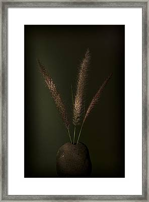 Flashlight Series 1-1 Framed Print