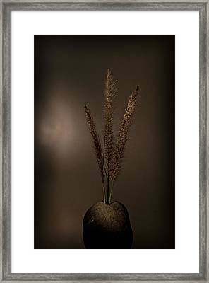 Flashlight Series 4-1 Framed Print