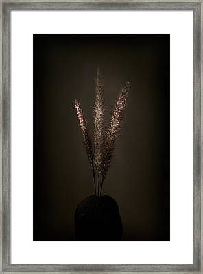 Flashlight Series 5-1 Framed Print