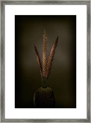Flashlight Series 6-1 Framed Print