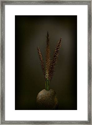 Flashlight Series 7-1 Framed Print