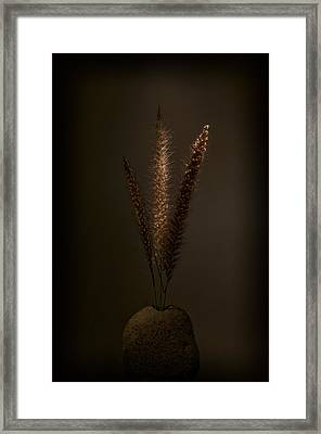 Flashlight Series 9-1 Framed Print