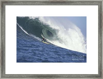 Flea On A Mavericks Giant Framed Print by Stan and Anne Foster