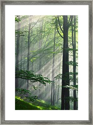 Fleeting Beams Framed Print by Evgeni Dinev
