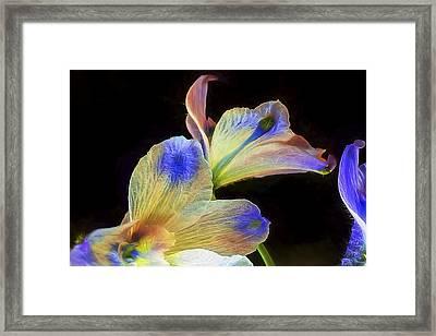 Fleeting Flowers Framed Print