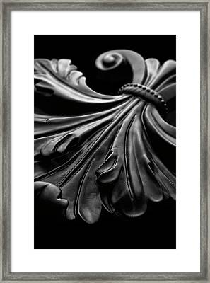 Fleur De Lis I Framed Print by Tom Mc Nemar