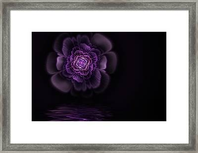 Fleur Framed Print by John Edwards
