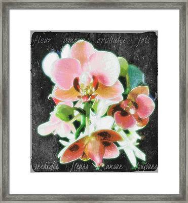 Fleur L'amour French Script Framed Print by ARTography by Pamela Smale Williams