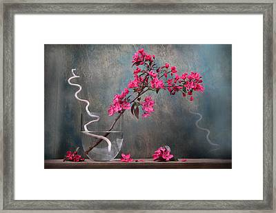 Fleur Framed Print by Manfred Lutzius