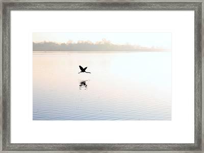 Flier Framed Print