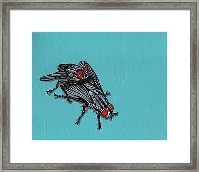 Flies Framed Print by Jude Labuszewski