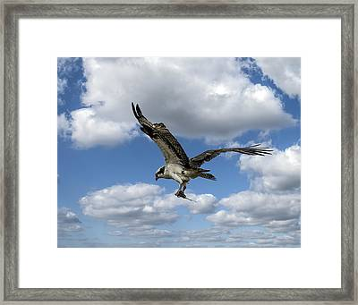 Flight Among The Clouds Framed Print
