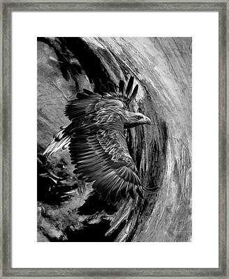 Flight For Freedom Black And White Framed Print