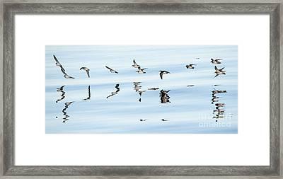 Flight Illusion Framed Print by Mike Dawson