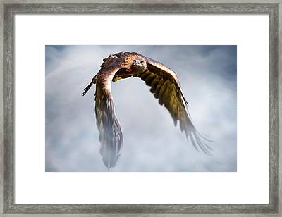 Flight Of Fancy Framed Print by Julie L Hoddinott