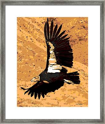 Flight Of The Condor Framed Print by George Pedro