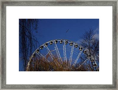 Flight Of The Ferris Framed Print by Jez C Self