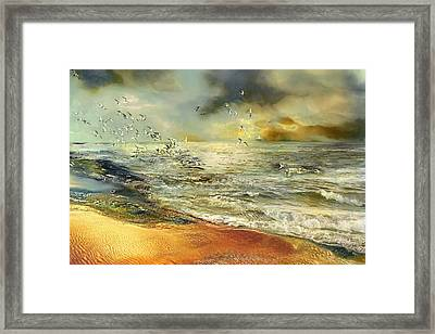 Flight Of The Seagulls Framed Print by Anne Weirich