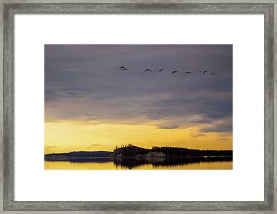 Flight Over Goose Bay Framed Print by Ron Day