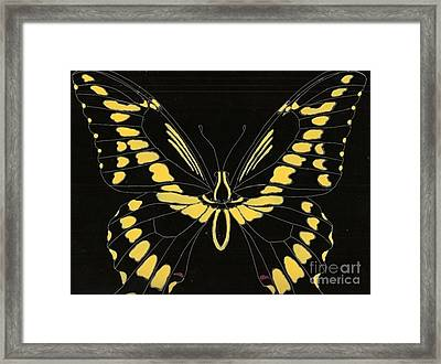 Flight Series 11 Yellow Tail Framed Print by Iamthebetty Tbone