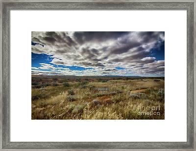 Framed Print featuring the photograph Flinders Ranges Fields  by Douglas Barnard