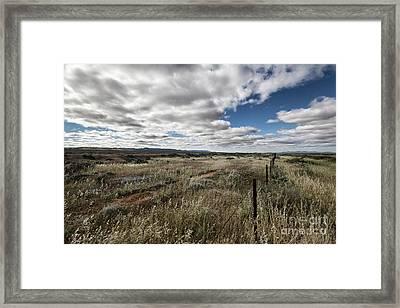 Framed Print featuring the photograph Flinders Ranges Fields V2 by Douglas Barnard
