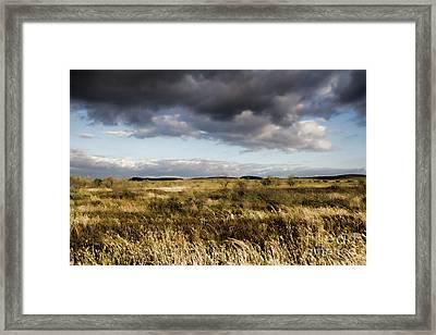 Framed Print featuring the photograph Flinders Ranges Fields V3 by Douglas Barnard