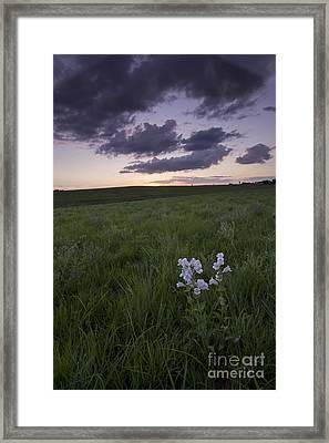 Flint Hills, Kansas Framed Print